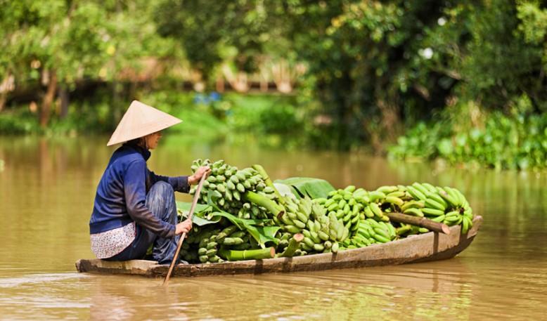 Traditional Vietnam