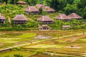 Mai-Chau-Ecolodge-Overview