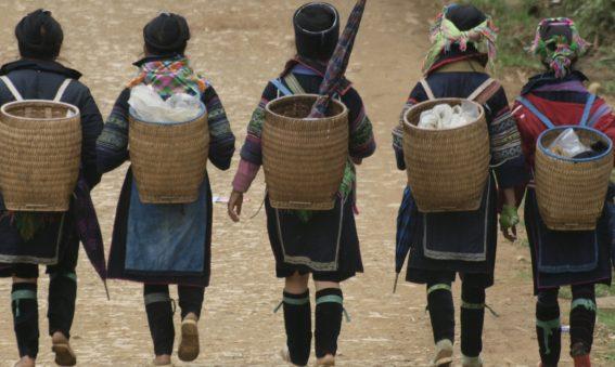 Viajes por Vietnam